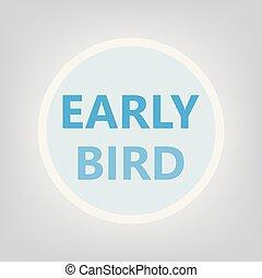 ranní ptáče, pojem