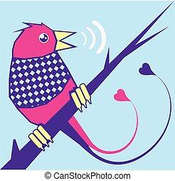 ranní ptáče, zpěv