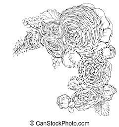 ranunculus, fleurs, linéaire, carte, salutation