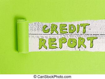 rap, dues, feuille, report., paiement, history., partition, business, dette, mot, crédit, écriture, concept, emprunt, texte, note