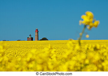 Rape and lighthouses in Cape Arkona (Germany).