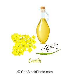 Rapeseed oil in bottle, canola blossom flowers and seeds and...