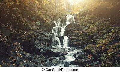 Rapid foamy mountainous forest waterfall stream - Rapid...