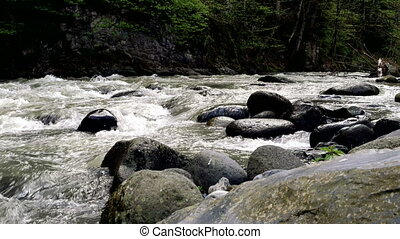 Rapid mountain river flows around Borjomi town, Georgia...