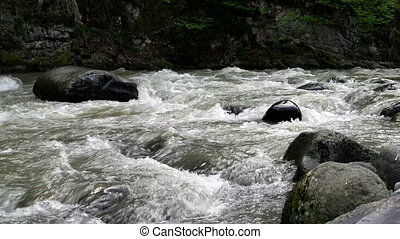 Rapid mountain river flows around Borjomi town, Georgia...