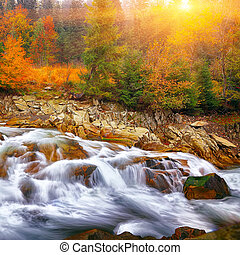 rapid mountain river in autumn at sunset