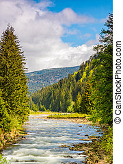 Rapid mountain river in valley