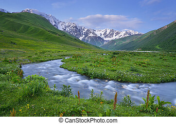 Summer landscape with the mountain river. Evening after sunset. Caucasus. Zemo Svaneti, Georgia