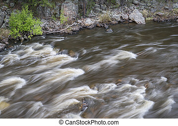 rapid on the Cache la Poudre River