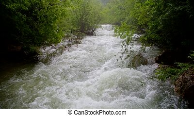 Rapid River Flow Rushing Down In Green Forest