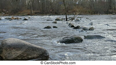 rapid river flows on a stony bed, a large boulder in the...