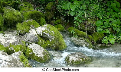 rapid stream with rocks and moss