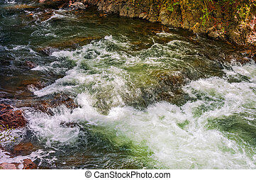 Rapid stream with rocky shore - Rapid stream flow along...