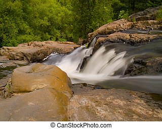 Rapids Falling Into the Forest