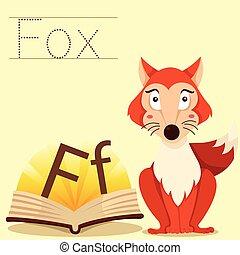 raposa, illustrator, vocabulário, f