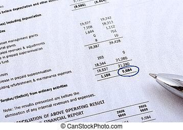 rapport, finansielle