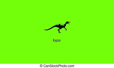 Raptor icon animation best simple object on green screen background