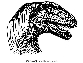 raptor - illustration of a dinosaur