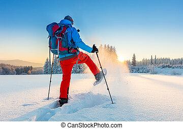 raqueta, paseante, corriente, nieve, polvo