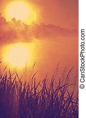 rar, solnedgang, hen, sø