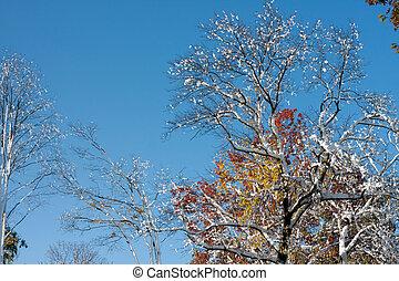 Rare Fall Blizzard Snow Storm