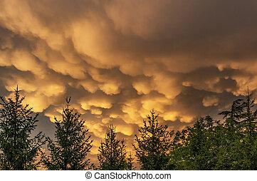 Rare mammatus clouds