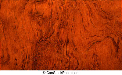 RARE PIECE OF EXOTIC WOOD - sample of exotic wood