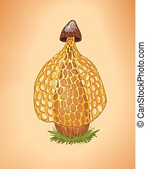 Rare yellow mushroom illustration.Cartoon vector fungus. Dictyophora indusiata.Tropical Stinkhorn mushroom, Phallus indusiatus