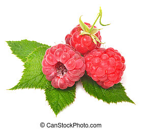 Rasberry with leaves isolated on white