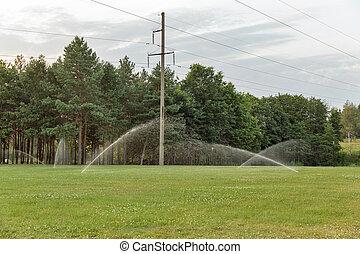 Rasen Bewässerungssystem rasen bewässerung irrigationsystem dämmern vegetation