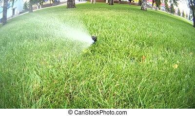 Rasen Bewässerungssystem automatisch bewässerung rasen rasen kommt düse stock