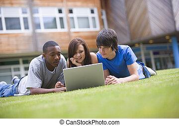 rasen, studenten, laptop, hochschule, gebrauchend, campus