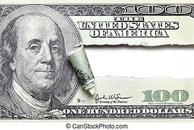 rasgado, dólar, billete de banco