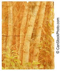 rasgado, isolado, textura, antigas, papel, pedaço, bamboo.