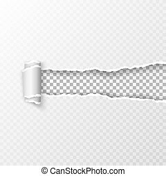 rasgado, transparente, checkered, folha, de, paper., papel, padrão, com, macio, sombra, e, checkered, fundo, em, a, resultar, janela., vetorial, ilustração