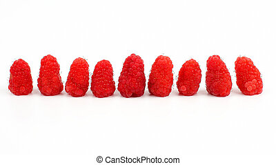 raspberries in a row lying on white background