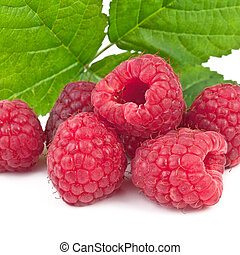 raspberries isolated on white background, square