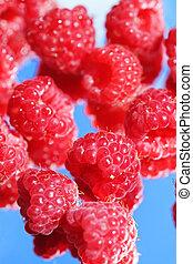 Raspberries on a blue background
