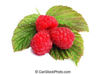 Raspberry 6