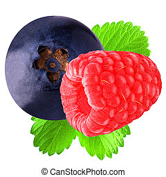 Raspberry and blueberry with leaf