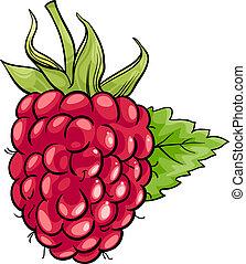 raspberry fruit cartoon illustration