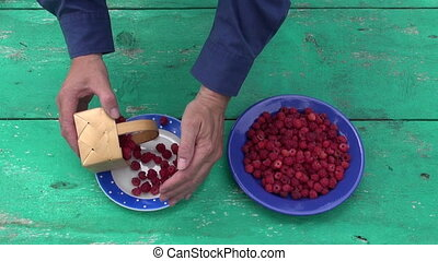 raspberry in two ceramic plate - fresh sweet summer...