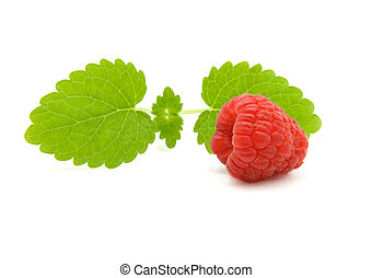 raspberry with green leaves on white background
