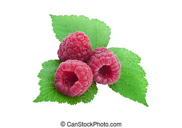 raspberry with leaf on white  background