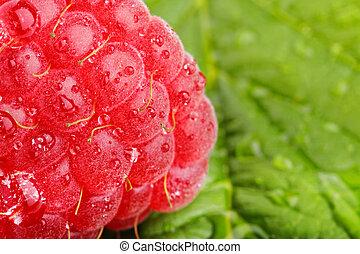 raspberrys 2