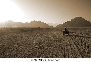 Rassemblement,  désert