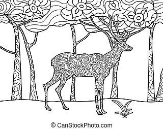 raster, coloritura, cervo, adulti, libro