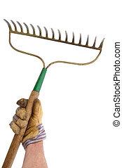 rastrillo, jardinero, tenencia, jardín