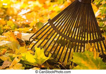 rastrillo, leafs