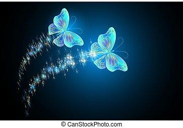 rastro, borboletas, voando, flamejar, brilho